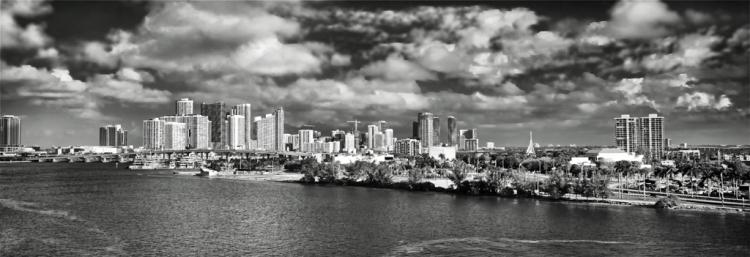Miami Morning