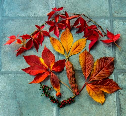 An Autumn Arrangement